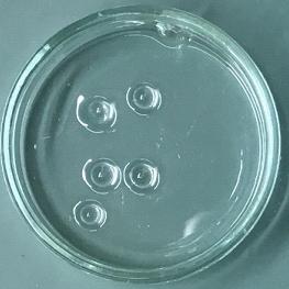アクリル樹脂・ポリカーボネート樹脂溶解剤